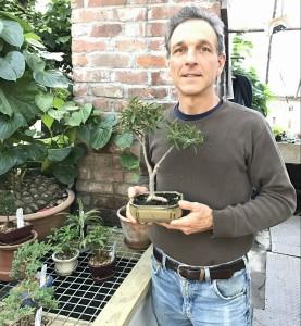 Byron-Martin-Logees-bonsai