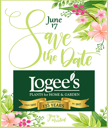 logees-125th-anniversary-save-the-date2