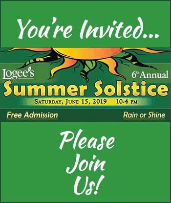 2019-logees-summer-solstice-home-th
