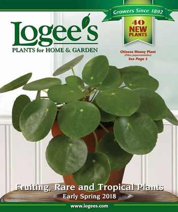 Logees-2018-Early-Spring-cover