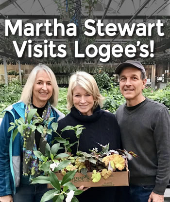 martha-stewart-visits-logees-th