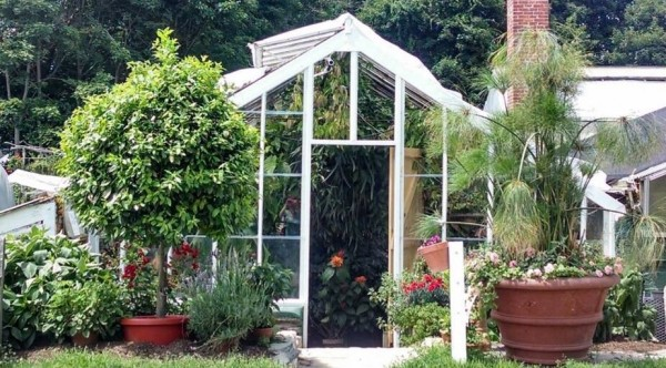 Looking For A Quot Greenhouse Or Plant Nursery Near Me Quot Then