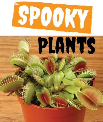 spook-plants-th